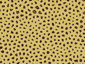 Animal Fur Texture - Leopard poster