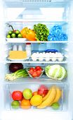 stock photo of water cabbage  - Refrigerator full of food - JPG