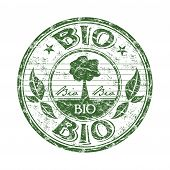 Bio rubber stamp