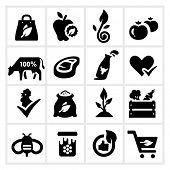 stock photo of milk products  - Organic Food Icons - JPG