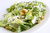 image of romaine lettuce  - A plated chopped caesar salad with croutons - JPG