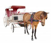 picture of cinderella coach  - horse fairy tale carriage cabin isolated white background use for transport decoration object - JPG