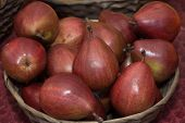 picture of anjou  - Red Anjou Pears in a wicker basket.