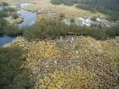 stock photo of swamps  - Aerial photography - JPG