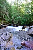 pic of avalanche  - whitewater along the Avalanche lake trail in Glacier National Park - JPG