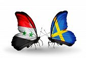 picture of sweden flag  - Two butterflies with flags on wings as symbol of relations Syria and Sweden - JPG