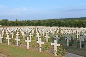 stock photo of battlefield  - French military cemetery at the heart of the First World War Verdun battlefield - JPG