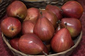 pic of anjou  - Red Anjou Pears in a wicker basket.