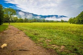 foto of cade  - Spring comes to the Cades Cove valley of the Great Smoky Mountains National Park - JPG