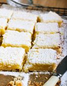 picture of icing  - Tangy lemon squares with icing sugar on rack - JPG
