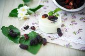 image of mulberry  - sweet delicious home made yogurt with mulberry - JPG