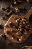 stock photo of morel mushroom  - Raw Organic Morel Mushrooms Ready to Cook - JPG