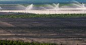 picture of apple orchard  - Watering apple orchards  - JPG