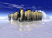 stock photo of h20  - this is landscape with some penguins on it - JPG