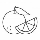 Orange Fruit Thin Line Icon, Fruit And Vitamin, Juicy Sign, Vector Graphics, A Linear Pattern On A W poster