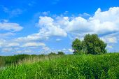 Summer Landscape With Rural Field And White Clouds On Blue Sky. Big White Cloud Above Green Rural Fi poster