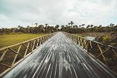 Wide-angle View Of A Long Wet Authentic Wooden Bridge Over The Meadow Bog after The Rain, With Palms poster