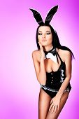 stock photo of bunny costume  - Sexy playgirl in bunny costume over grey background - JPG