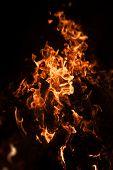 Flames Of Bonfire At Night poster