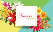 Summertime Floral Poster. Tropical Flowers And Palm Leaves Design For Banner, Flyer, Brochure, Fabri poster
