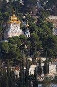 picture of church mary magdalene  - Golden domes of the Church of Mary Magdalene and cypresses - JPG