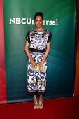 LAS VEGAS - APR 22:  Louise Roe at the NBCUniversal Summer Pres Day 2013 at the Huntington Langham H