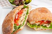 image of deli  - italian ciabatta panini sandwich with chicken and tomato