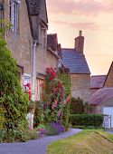 picture of hollyhock  - Cotswold cottages with hollyhocks and roses at sunset - JPG
