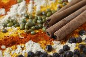 stock photo of fenugreek  - Side view showing cinnamon sticks - JPG
