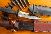 Military Knives And Scabbard On The Wooden Background