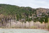 stock photo of ural mountains  - Beautiful Ural nature on the river Inzer South Ural region Russia - JPG