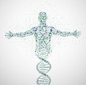 stock photo of male body anatomy  - Abstract model of man of DNA molecule - JPG