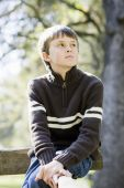 picture of young boy  - Portrait of a Cute Young Boy Sitting on a Wooden Railing Looking Away From Camera - JPG