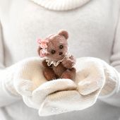 image of cute bears  - Female hands holding a cute teddy bear - JPG
