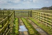 picture of flood  - Flooded farmland in Norfolk UK on a bright day in Winter - JPG