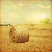 picture of hay bale  - Agricultural field with hay bales at sunset in grunge and retro style - JPG
