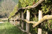 picture of wooden fence  - wooden fence with a fence in the countryside - JPG