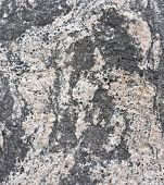 image of feldspar  - Folded gneiss with amphibolite feldspar and quartz - JPG