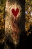 stock photo of heartbreaking  - Environmental Artistic Illustration Of A Tree Wearing A Heart On Its Trunk Bleeding Tears Of Blood And Heartache While Grieving From Its First Love Heartbreak - JPG