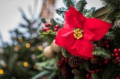 Christmas Decoration. Christmas Decoration. Berries, Cones And Ribbons Decorate Festive Spruce poster