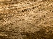 Texture Of A Dirty Bad Dirt Road Dirt Road With Puddles And Clay Drying Mud With Cracks And Ruts. Of poster