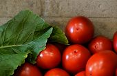 Red Ripe Tomato On Wall Background, Yellow, Closeup, Big, Ripe, Juicy, Nature, poster