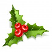 christmas mistletoe icon