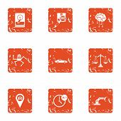 Scientific Knowledge Icons Set. Grunge Set Of 9 Scientific Knowledge Icons For Web Isolated On White poster