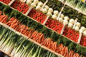 foto of profusion  - many fresh different types of vegetables on market - JPG