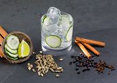 stock photo of cardamom  - Gin tonic cocktail with lima cucumber vanilla cloves cardamom cinnamon and juniper berries - JPG
