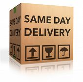 image of special day  - package delivery same day shipment urgent and quick cardboard box internet web shop order delivery - JPG