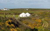 image of nomads  - Yurt in countryside - JPG