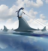 picture of harness  - Fear Management and taking control of anxiety by overcoming limitations and controling your destiny as a brave penguin on a dangerous shark fin guiding the predator with a harness as a metaphor for confidence and leadership - JPG
