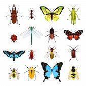 pic of insect  - Insects colored decorative icons set with dragonfly beetle butterfly isolated vector illustration - JPG
